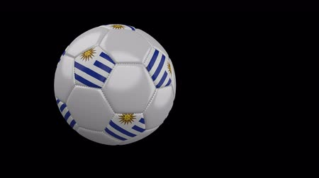 montevideo : Soccer ball with the flag of Uruguay flies past the camera, slow motion, 4k footage with alpha channel