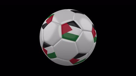 パレスチナ : Soccer ball with the flag of Palestine colors rotates on transparent background, 3d rendering, prores footage with alpha channel, loop