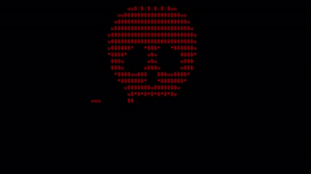 petya : Screen created by a computer virus, a text skull and a blinking screen