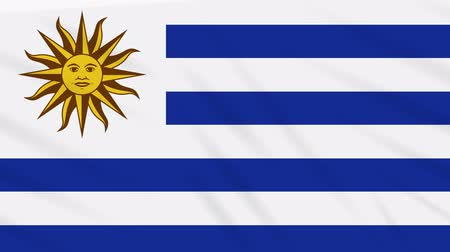 montevideo : Uruguay flag waving cloth, ideal for background loop