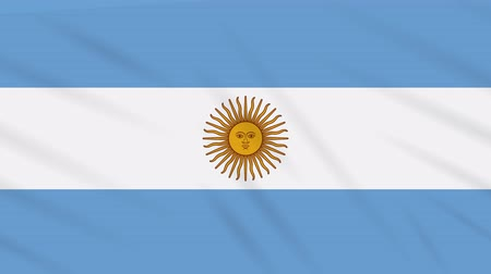 coupe du monde : Argentina flag waving cloth, ideal for background loop