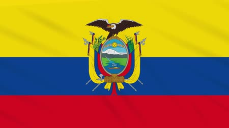 quito : Ecuador flag waving cloth, ideal for background loop