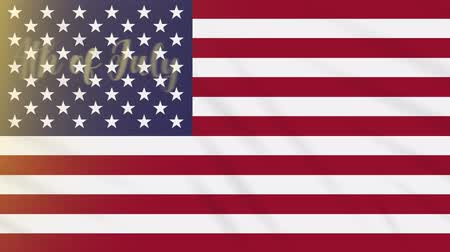 usa independence day : 4th of July on a background of a waving US flag, loop Stock Footage