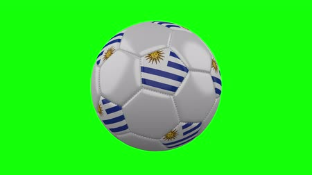 montevideo : Soccer ball with Uruguay flag rotates on green chroma key background, loop Stock Footage