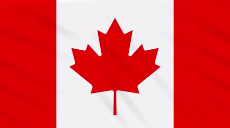 canadense : Canada flag waving cloth, ideal for background loop Stock Footage