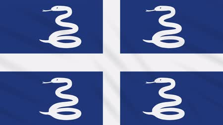 cobra : Martinique flag waving cloth, ideal for background loop