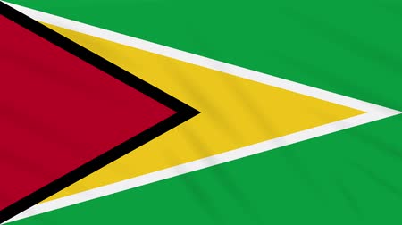 guyana : Guyana flag waving cloth, ideal for background loop Stock Footage