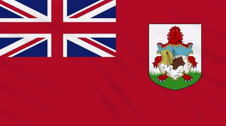 bermudas : Bermuda flag waving cloth, ideal for background loop Vídeos