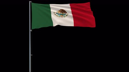 áttekinthetőség : Isolate big flag of Mexico on a flagpole fluttering in the wind on a transparent background, 3d rendering, 4k prores 4444 footage with alpha transparency Stock mozgókép