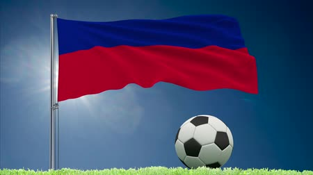 bola de futebol : Flag of Haiti fluttering and a fsoccer ball rolls on the lawn, 3d rendering