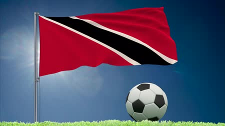 bulutsuz : Flag of Trinidad and Tobago fluttering and a fsoccer ball rolls on the lawn, 3d rendering