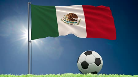 mexico city : Flag of Mexico fluttering and a fsoccer ball rolls on the lawn, 3d rendering