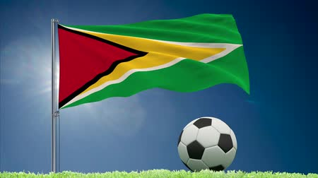 guyana : Flag of Guyana fluttering and a fsoccer ball rolls on the lawn, 3d rendering Stock Footage