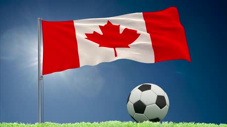 végső : Flag of Canada fluttering and a fsoccer ball rolls on the lawn, 3d rendering