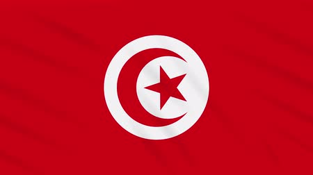 tunezja : Tunisia flag waving cloth, ideal for background loop