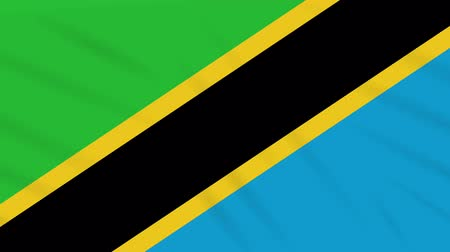 ações : Tanzania flag waving cloth, ideal for background loop