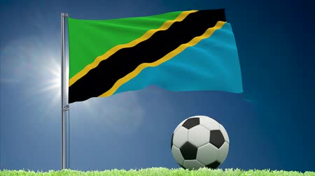 ações : Flag of Tanzania fluttering and soccer ball rolls on lawn, 3d rendering
