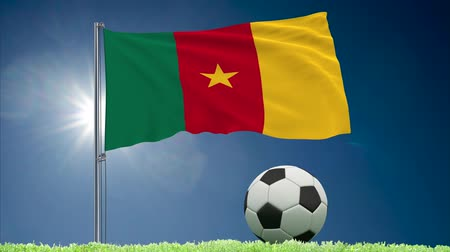 felhőtlen : Flag of Cameroon fluttering and soccer ball rolls on lawn, 3d rendering