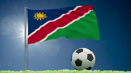 Намибия : Flag of Namibia fluttering and soccer ball rolls on lawn, 3d rendering Стоковые видеозаписи