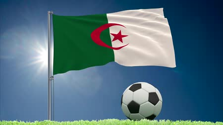 algeria : Flag of Algeria fluttering and soccer ball rolls on lawn, 3d rendering