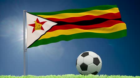 bulutsuz : Flag of Zimbabwe fluttering and soccer ball rolls on lawn, 3d rendering Stok Video