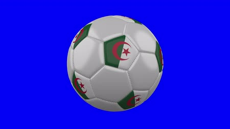 algeria : Soccer ball with Algeria flag rotates on blue chroma key background, loop Stock Footage