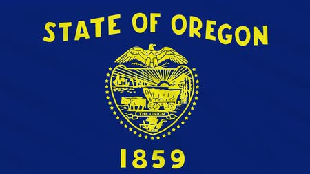 Орегон : Oregon flag flutters in the wind, loop for background.