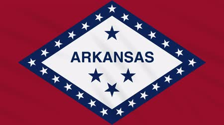 proportions : Arkansas flag flutters in the wind, loop for background