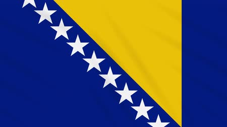 bosnia and herzegovina : Bosnia and Herzegovina flag waving cloth, ideal for background, loop
