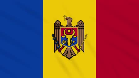 libbenő : Moldova flag waving cloth, ideal for background, loop