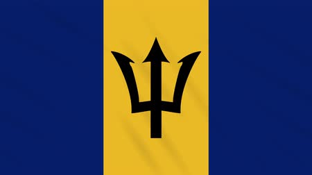 barbados : Barbados flag waving cloth, ideal for background, loop Stock Footage