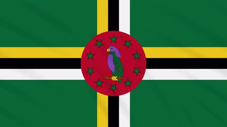 společenství : Commonwealth of Dominica flag waving cloth, ideal for background, loop Dostupné videozáznamy