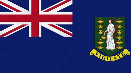 futball : British Virgin Islands flag waving cloth, ideal for background, loop