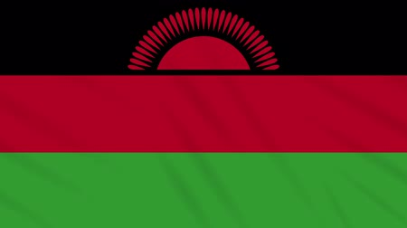 malawi : Malawi flag waving cloth, ideal for background, loop