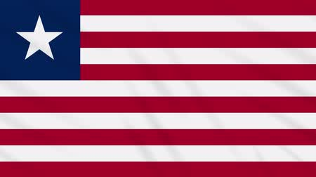 işsizlik : Liberia flag waving cloth, ideal for background, loop Stok Video