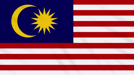 kalimantan : Malaysia flag waving cloth, ideal for background, loop