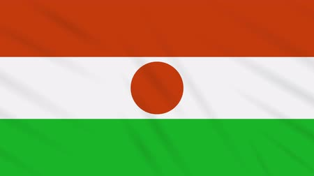 proportions : Republic of Niger flag waving cloth, ideal for background, loop