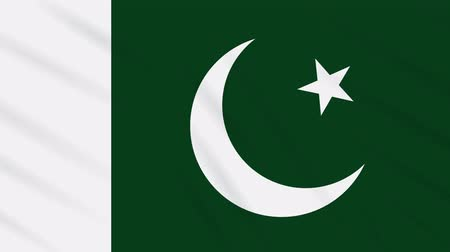Пакистан : Pakistan flag waving cloth, ideal for background, loop