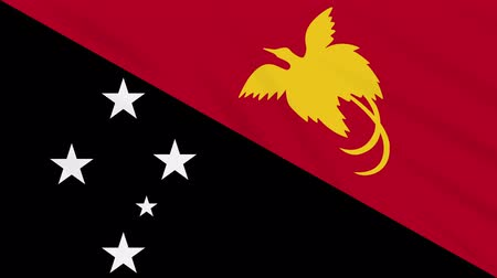 monarchy : Papua New Guinea flag waving cloth, ideal for background, loop
