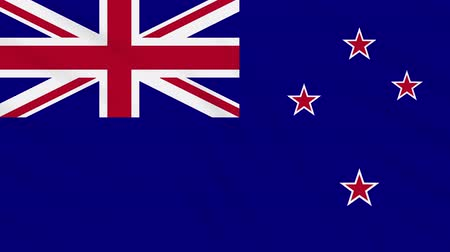 nowa zelandia : New Zealand flag waving cloth, ideal for background, loop