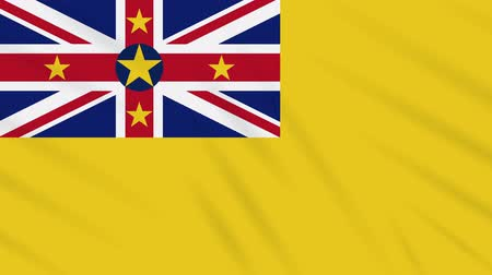 nowa zelandia : Niue flag waving cloth, ideal for background, loop Wideo