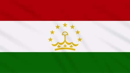 final round : Tajikistan flag waving cloth, ideal for background, loop