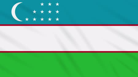 final round : Uzbekistan flag waving cloth, ideal for background, loop