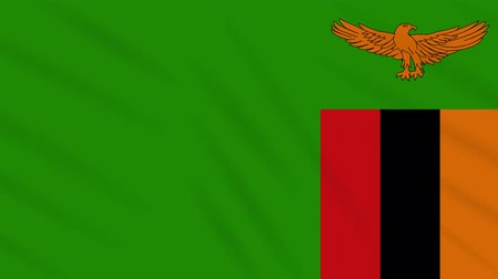 final round : Zambia flag waving cloth, ideal for background, loop