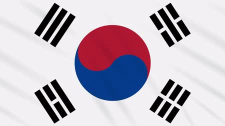 final round : South Korea flag waving cloth, ideal for background, loop