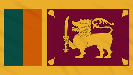 final round : Sri Lanka flag waving cloth, ideal for background, loop Stock Footage