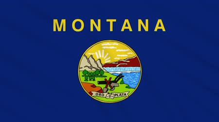 montana : Montana flag waving cloth, ideal for background, loop