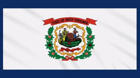 Виргиния : West Virginia flag waving cloth, ideal for background, loop Стоковые видеозаписи