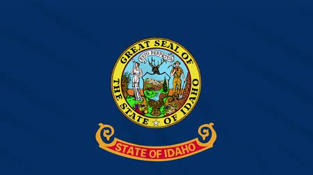 proportions : Idaho flag waving cloth, ideal for background, loop