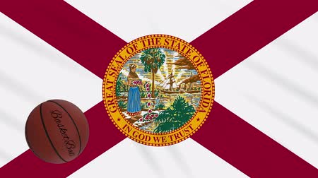 abroncs : Florida flag and basketball ball rotates against background of a waving cloth, loop Stock mozgókép